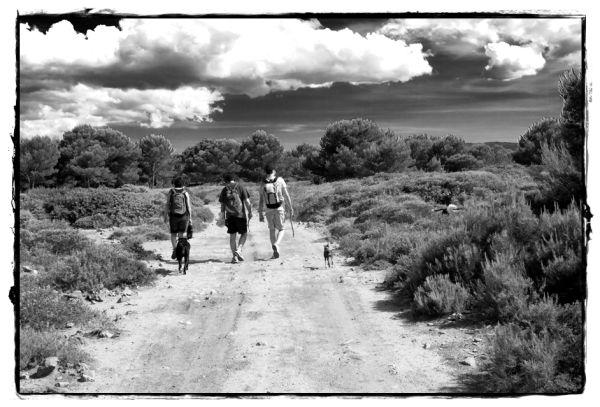 Caminants / Hikers