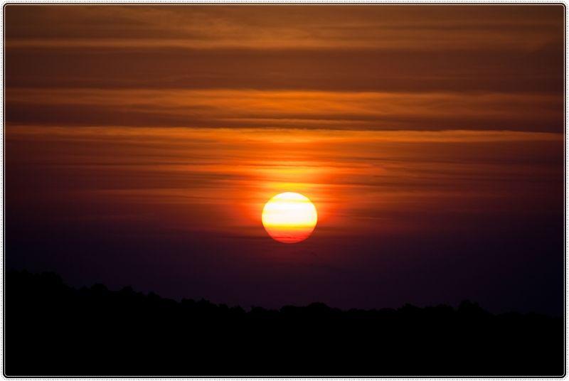 El sol acarona /  The sun caresses