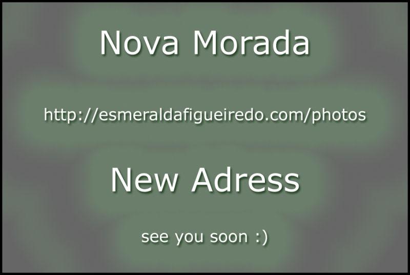 Nova Morada / New Address