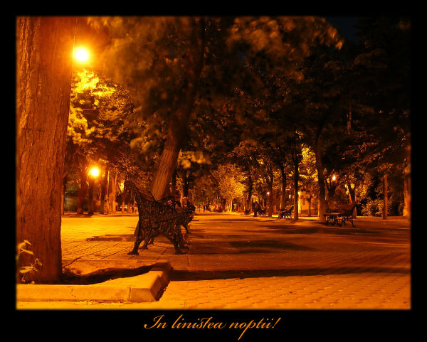 Silence in the night