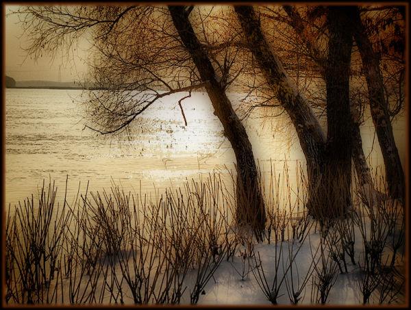 Winter on Danube