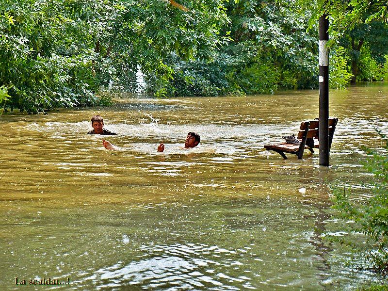 Taking advantage of the flood