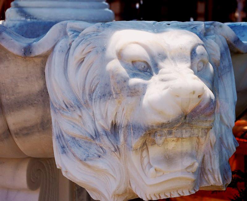 Lion King remembering