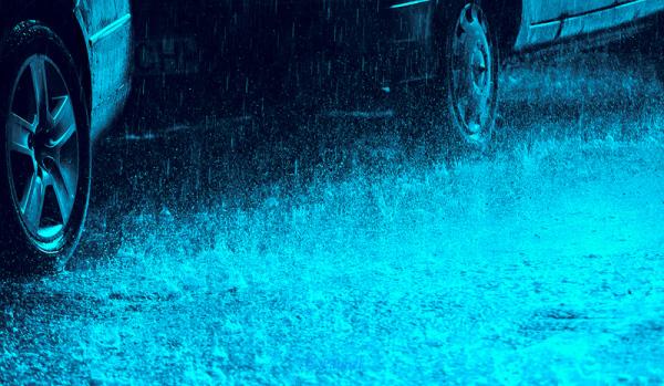 The rain  5