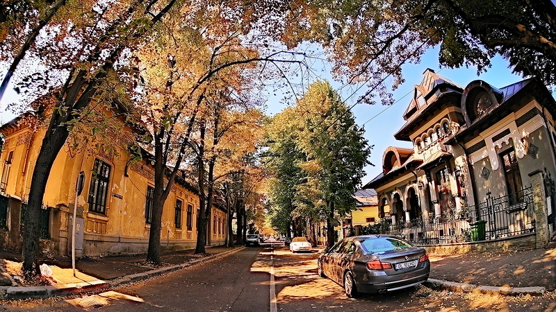 Childhood Street
