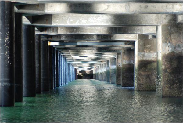 Bajo el muelle de Puerto Deseado (Argentina)
