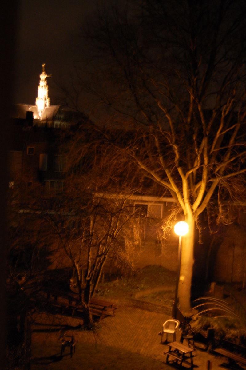 light contrast city park night capture