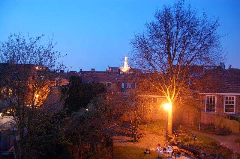 Spring evening, city park