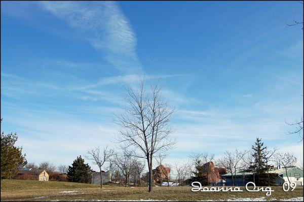 clear sky - winter