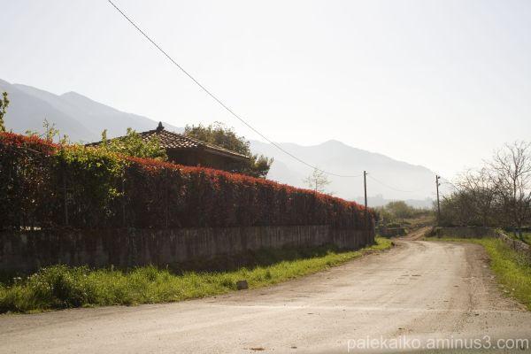 paisaje moris asturias