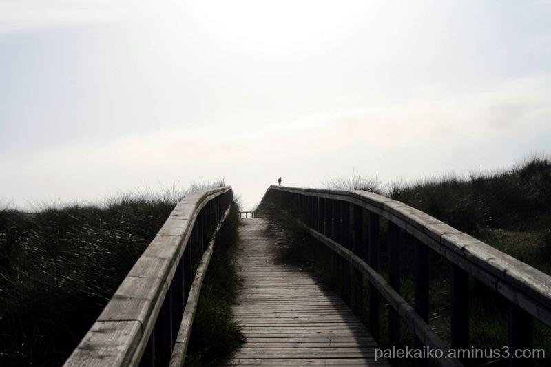 playa san juan asturias