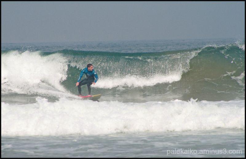 surf xagó