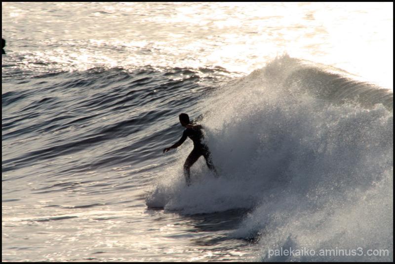 surf mongol