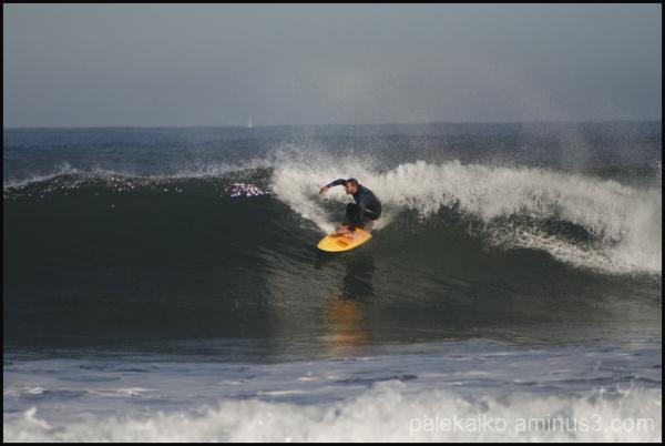 surf salinas