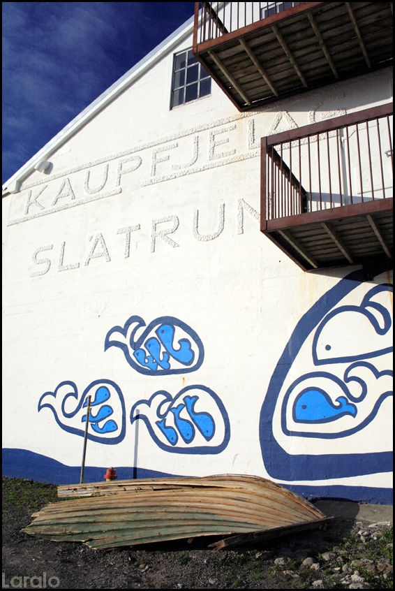 Húsavík, iceland, whale museum