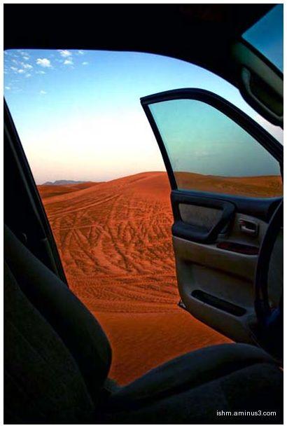 Desert bashing