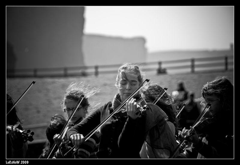 The B&W Violin