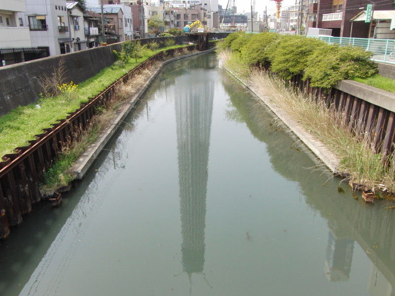 Reflection of the Tokyo Sky Tree #5
