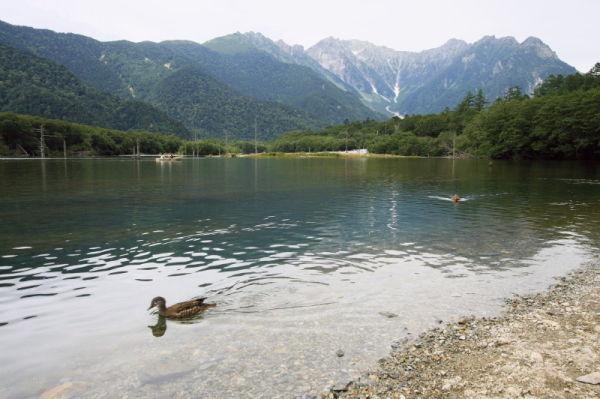 Summer resort #14