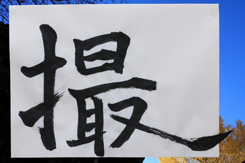 first Calligraphy in the New Year 2011