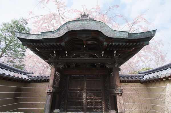 高台寺 #2