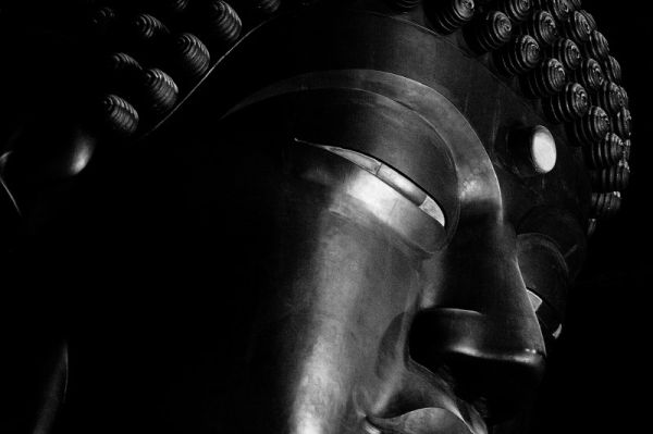 Gentleness of the Great Buddha #1
