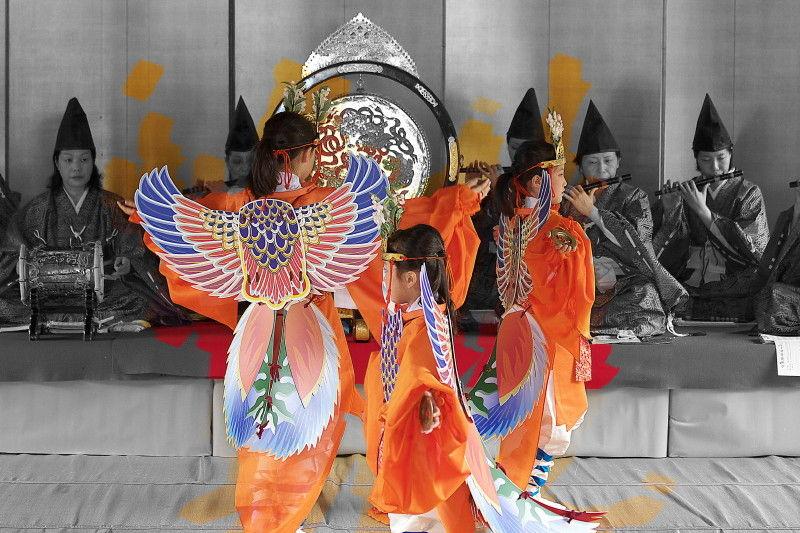 Dance of Phoenix