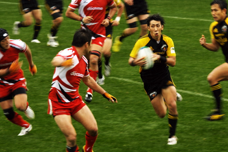 Warriors in black and yellow #8