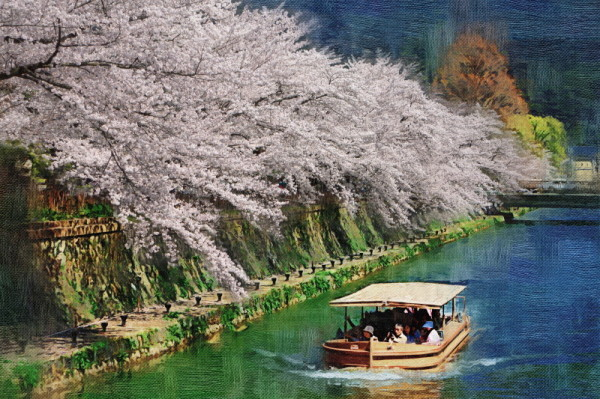 Let the boat sail under the blossoms.