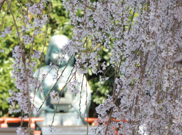 Let the statue sit under the blossoms.