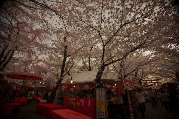 Let the people wait until dark under the blossoms.