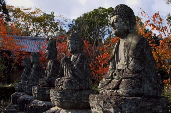 Autumn in Kyoto #5