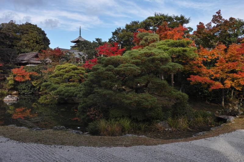 Autumn in Kyoto #7
