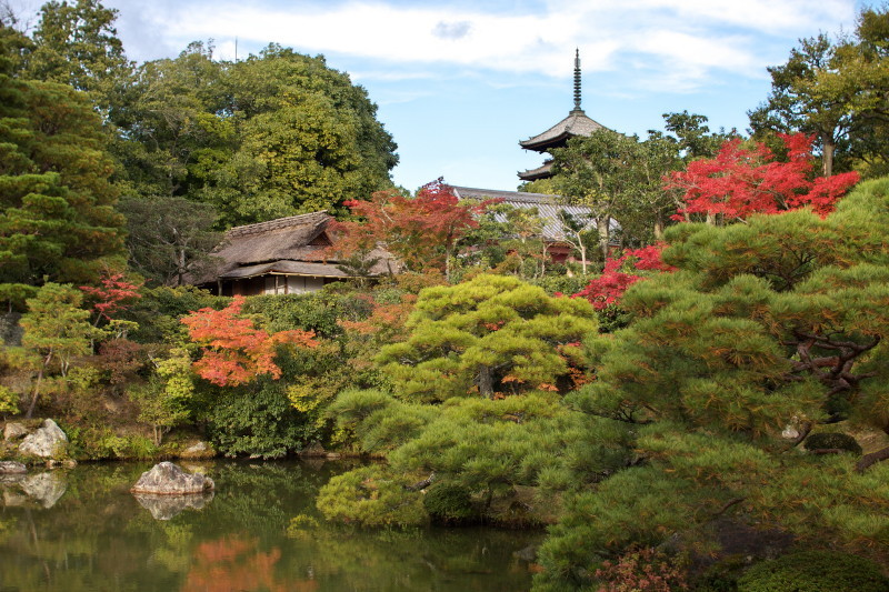 Autumn in Kyoto #8