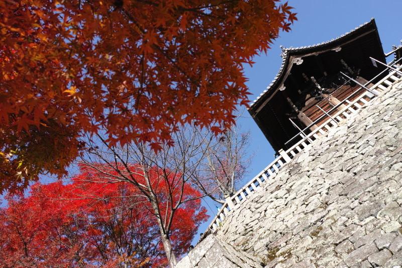 Autumn in Kyoto #17