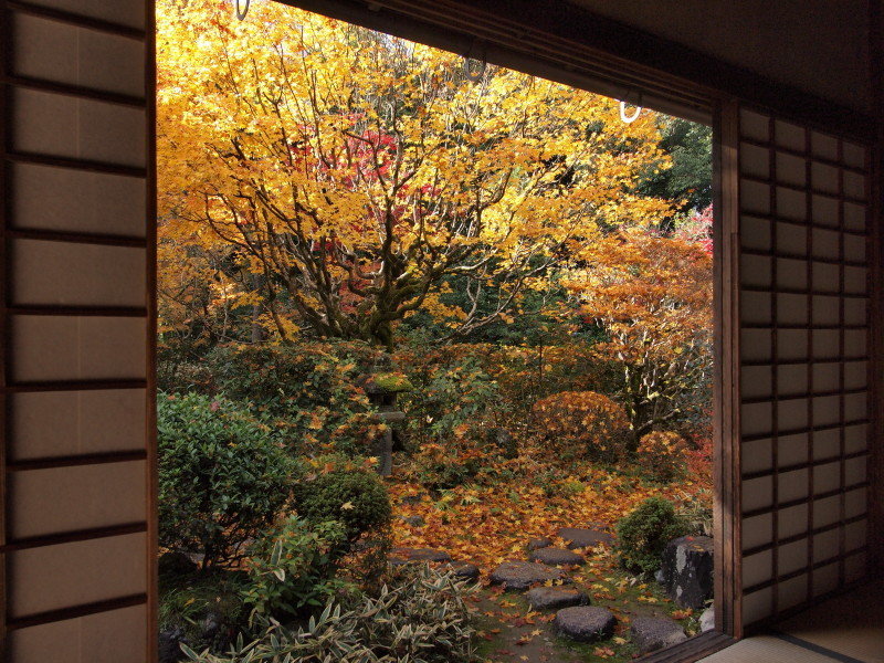 Autumn in Kyoto #18