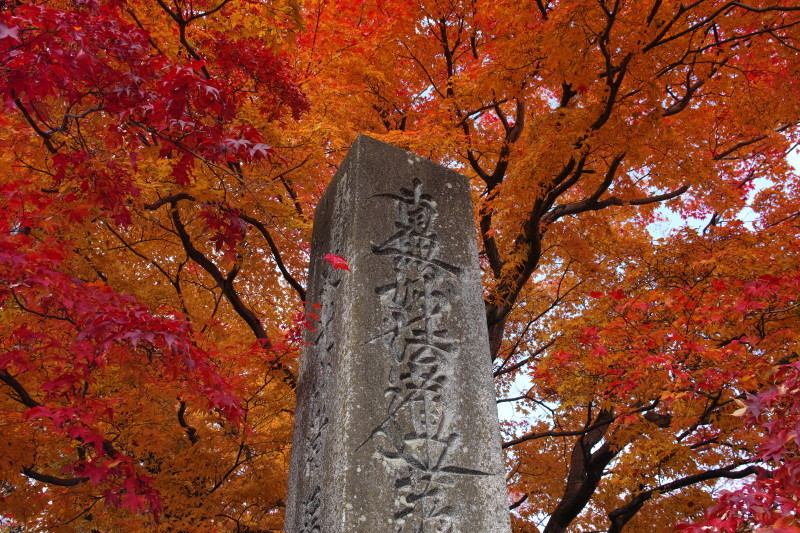 Autumn in Kyoto #25