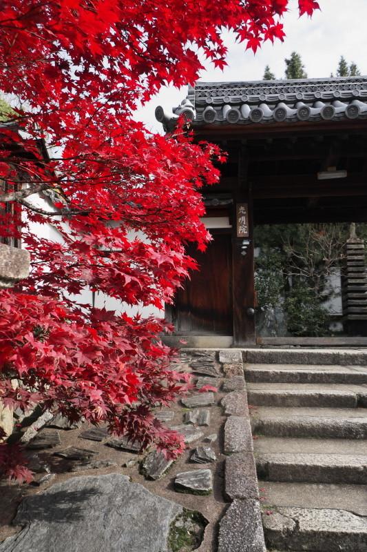 Autumn in Kyoto #34
