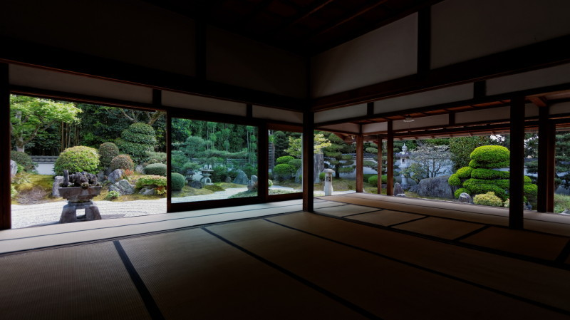 garden view from a tatami room #2