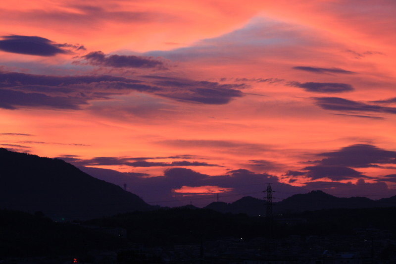 Summer sunset #1