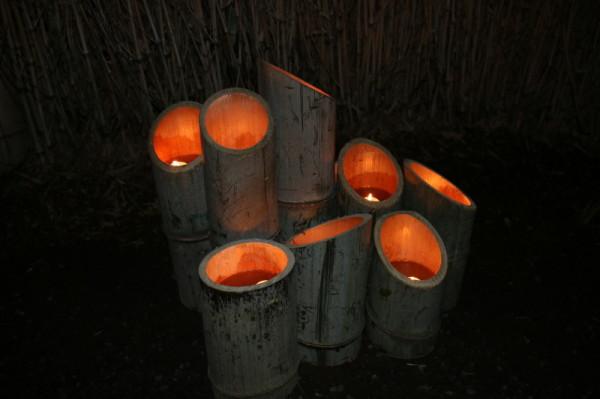 Bamboo light night #7