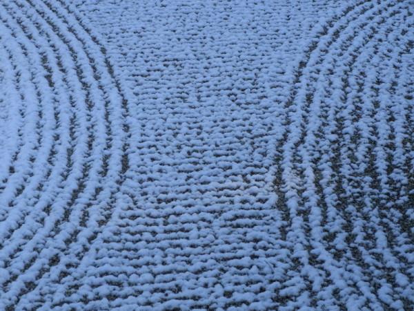 snow on Zen #1