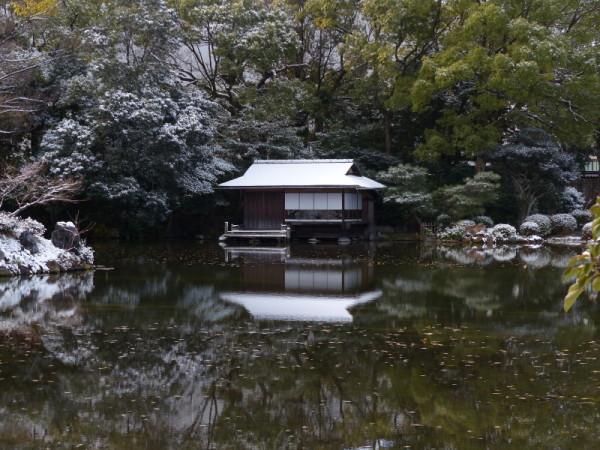 winter garden #7