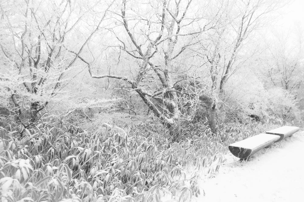 winter hike #5