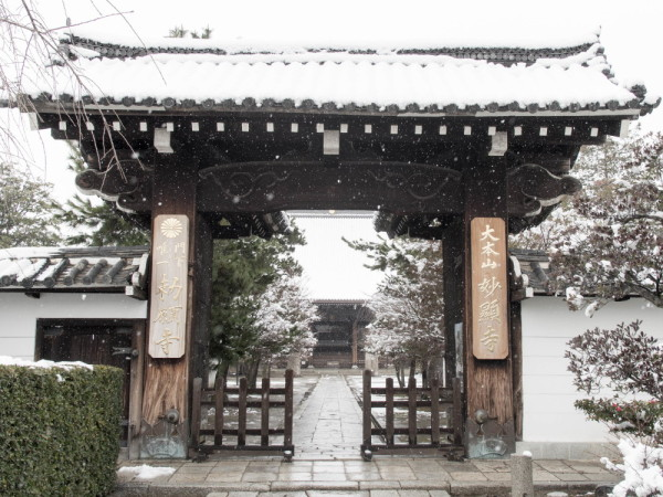 little trip in winter 妙顕寺 #1