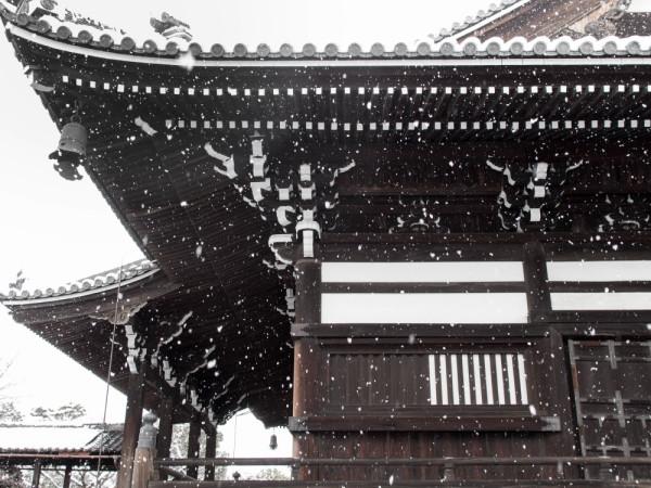little trip in winter 妙顕寺 #2