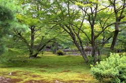 Garden of speechless sermon #1