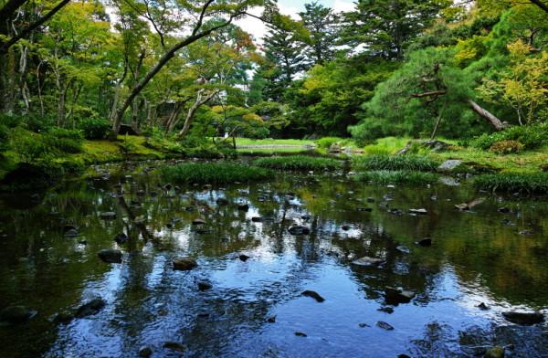 Marshal's beloved garden #2