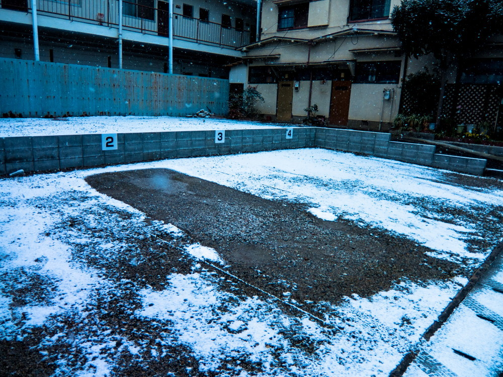 first snow #2