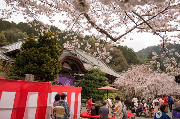 (Japanese) Tea Party